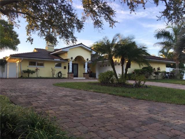 3720 10TH Street NE, St Petersburg, FL 33704 (MLS #U8026799) :: Baird Realty Group