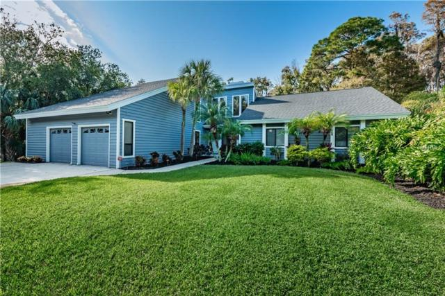 70 Deerpath Court, Oldsmar, FL 34677 (MLS #U8026922) :: Revolution Real Estate
