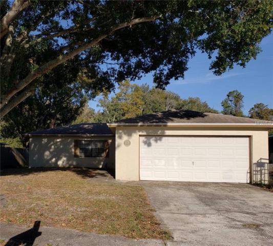 834 Green Valley Road, Palm Harbor, FL 34683 (MLS #U8027132) :: Team Virgadamo