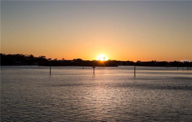 0 Meyers Cove Drive Lot 8, Tarpon Springs, FL 34689 (MLS #U8027150) :: Team Virgadamo