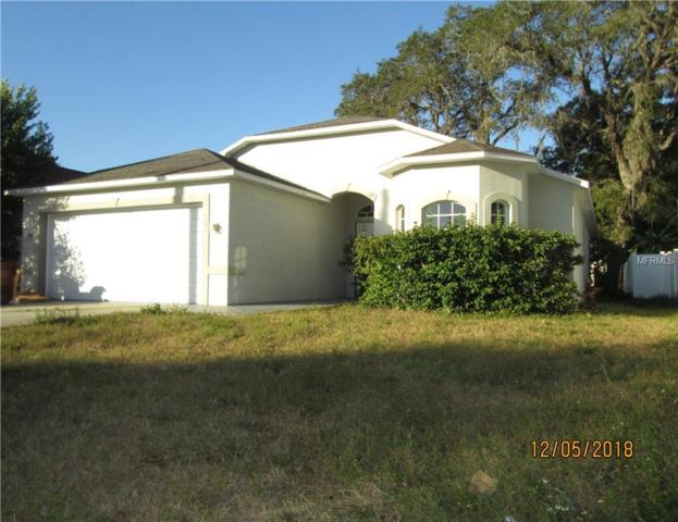 5649 Charles Street, New Port Richey, FL 34652 (MLS #U8027190) :: Team Virgadamo