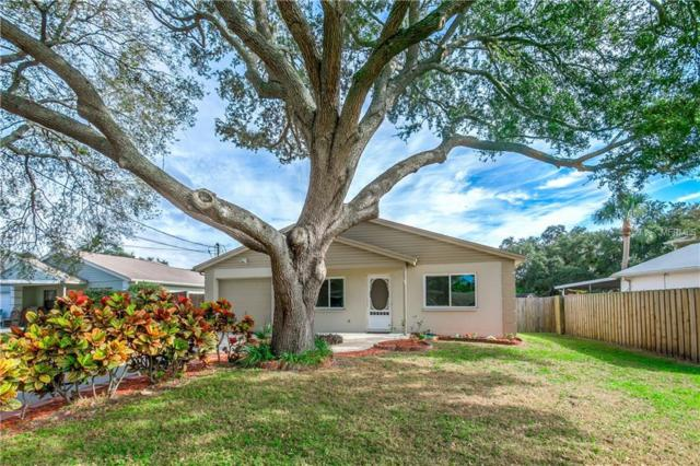 6816 S Englewood Avenue, Tampa, FL 33611 (MLS #U8027234) :: Gate Arty & the Group - Keller Williams Realty