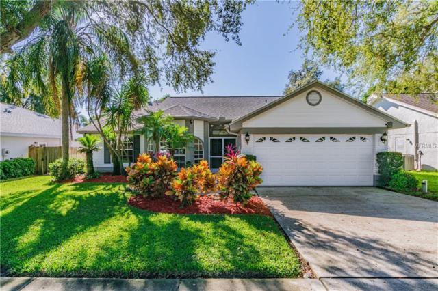 794 Derby Drive, Tarpon Springs, FL 34689 (MLS #U8027256) :: Revolution Real Estate