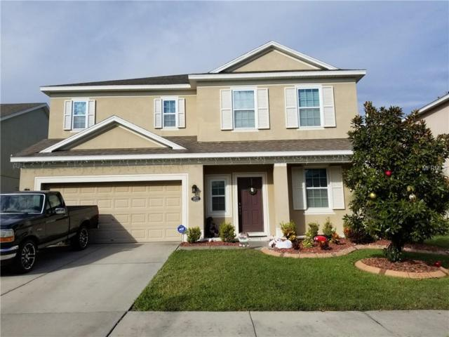 30633 Casewell Place, Wesley Chapel, FL 33545 (MLS #U8027296) :: Cartwright Realty