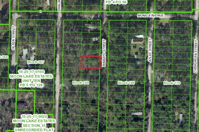 Address Not Published, New Port Richey, FL 34654 (MLS #U8027301) :: Homepride Realty Services