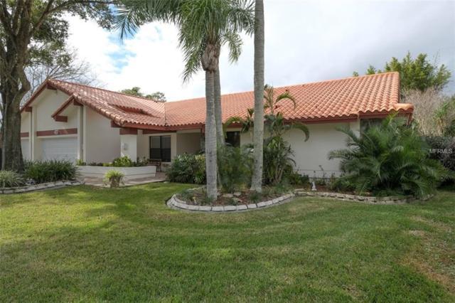 3191 Edgemoor Drive, Palm Harbor, FL 34685 (MLS #U8027421) :: Andrew Cherry & Company