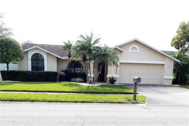 3600 103RD Avenue N, Clearwater, FL 33762 (MLS #U8027490) :: Cartwright Realty