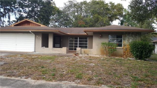601 Sugar Mill Road, Tarpon Springs, FL 34689 (MLS #U8027508) :: Beach Island Group