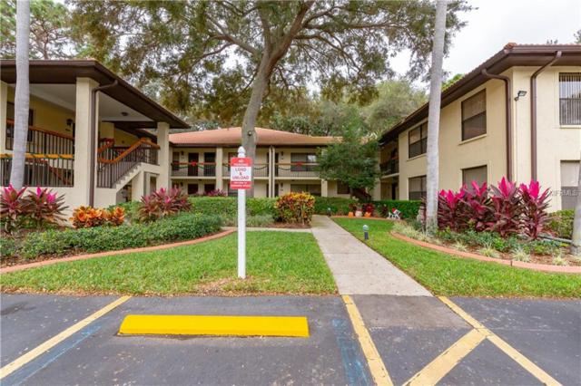 114 Hammock Pine Boulevard #114, Clearwater, FL 33761 (MLS #U8027516) :: RealTeam Realty