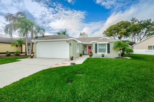 4203 Andover Street, New Port Richey, FL 34653 (MLS #U8027578) :: The Duncan Duo Team