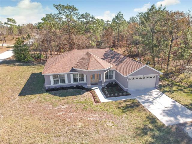 12144 Finch Road, Weeki Wachee, FL 34614 (MLS #U8027586) :: Mark and Joni Coulter | Better Homes and Gardens
