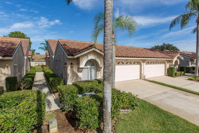 3877 Darston Street, Palm Harbor, FL 34685 (MLS #U8027624) :: Cartwright Realty