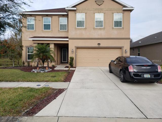 32795 Grantman Drive, Wesley Chapel, FL 33543 (MLS #U8027692) :: RE/MAX CHAMPIONS