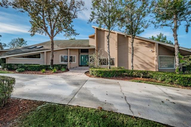 3010 Autumn Drive, Palm Harbor, FL 34683 (MLS #U8028059) :: Delgado Home Team at Keller Williams