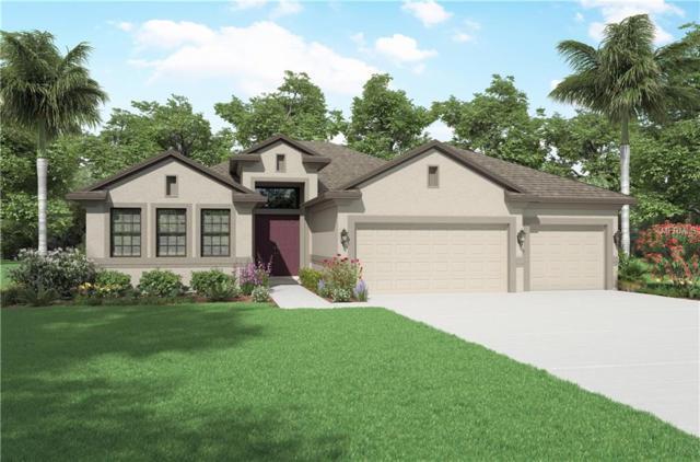 909 Bee Branch Court, Palm Harbor, FL 34683 (MLS #U8028506) :: Delgado Home Team at Keller Williams