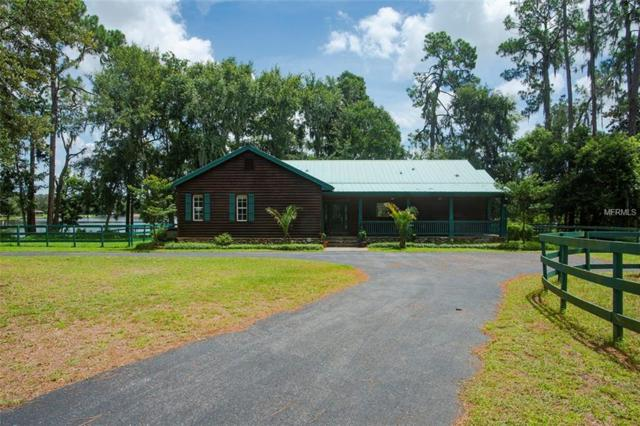 18833 Blake Road, Odessa, FL 33556 (MLS #U8028761) :: Homepride Realty Services