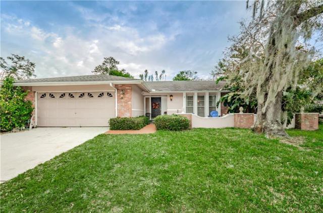 922 Winding Oaks Drive, Palm Harbor, FL 34683 (MLS #U8028853) :: Paolini Properties Group