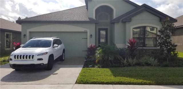 11921 Winterset Cove Drive, Riverview, FL 33579 (MLS #U8028912) :: The Duncan Duo Team