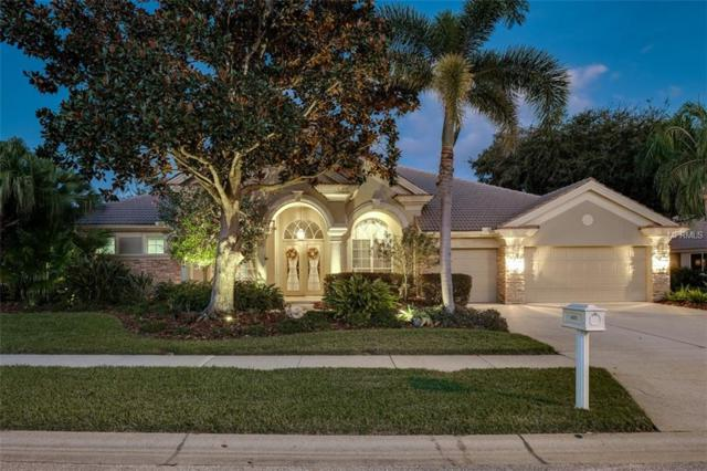 4479 Roanoak Way, Palm Harbor, FL 34685 (MLS #U8028996) :: Paolini Properties Group
