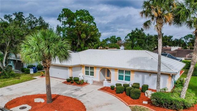 4405 Marine Parkway, New Port Richey, FL 34652 (MLS #U8029139) :: Remax Alliance