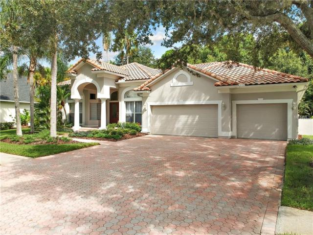 10106 Radcliffe Drive, Tampa, FL 33626 (MLS #U8029220) :: The Duncan Duo Team
