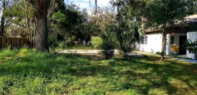 207 N Chester Street, Leesburg, FL 34748 (MLS #U8029259) :: Homepride Realty Services