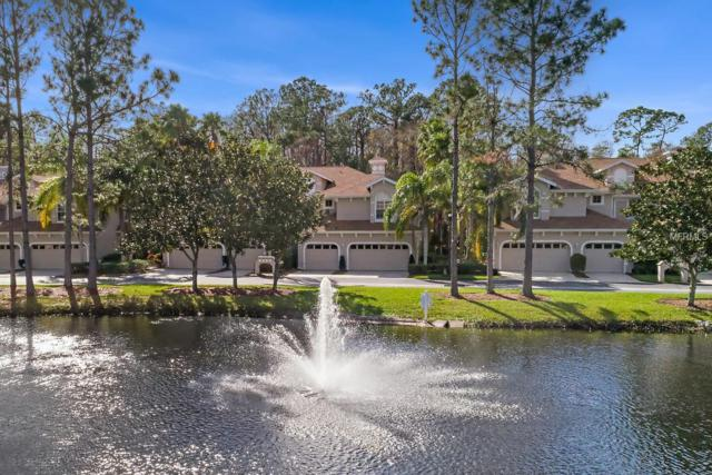 4242 Preserve Place, Palm Harbor, FL 34685 (MLS #U8029328) :: Paolini Properties Group