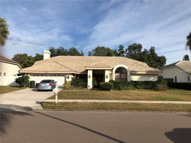 1817 Weatherstone Drive, Safety Harbor, FL 34695 (MLS #U8029406) :: Paolini Properties Group