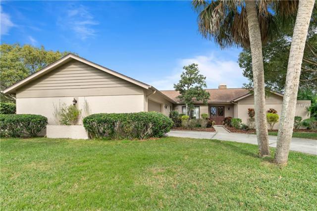 460 Holly Hill Road, Oldsmar, FL 34677 (MLS #U8029646) :: Paolini Properties Group