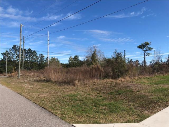 13074 Hexam Road, Weeki Wachee, FL 34613 (MLS #U8029736) :: Homepride Realty Services