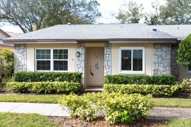 880 Maclaren Drive N A, Palm Harbor, FL 34684 (MLS #U8029776) :: Delgado Home Team at Keller Williams