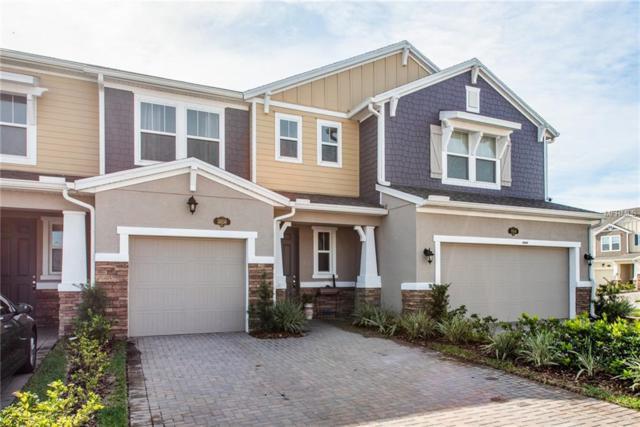 18850 Ulmus Street, Lutz, FL 33558 (MLS #U8030063) :: SANDROC Group