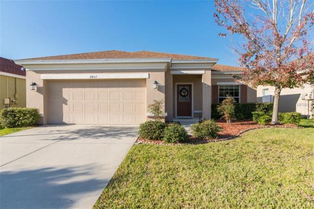 2851 Maple Brook Loop, Lutz, FL 33558 (MLS #U8030139) :: Arruda Family Real Estate Team