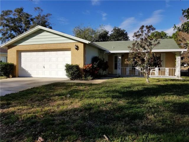 3505 Monte Rio Street, New Port Richey, FL 34655 (MLS #U8030311) :: Griffin Group