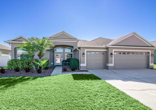 1830 Sumac Court, Trinity, FL 34655 (MLS #U8030347) :: Delgado Home Team at Keller Williams