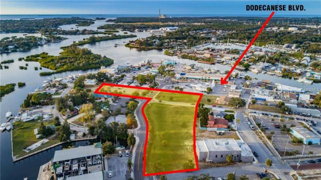 0 Roosevelt Boulevard, Tarpon Springs, FL 34689 (MLS #U8030470) :: The Duncan Duo Team