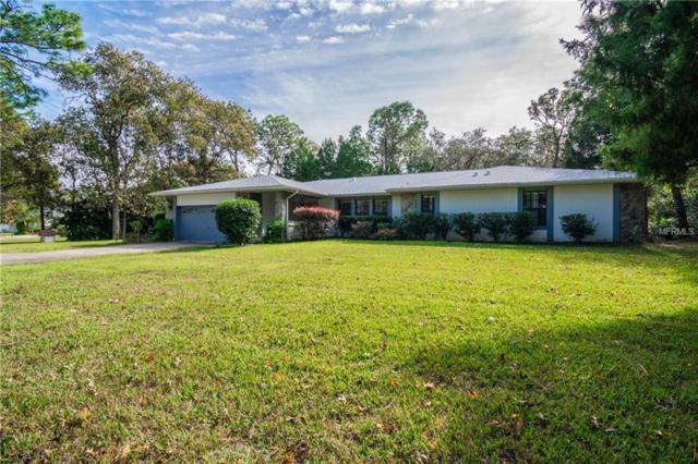 17 Byrsonima Court W, Homosassa, FL 34446 (MLS #U8030495) :: Griffin Group
