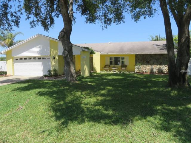 1841 Del Robles Terrace, Clearwater, FL 33764 (MLS #U8030645) :: Griffin Group