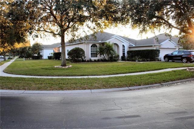 19127 Fern Meadow Loop, Lutz, FL 33558 (MLS #U8030701) :: Arruda Family Real Estate Team