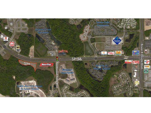 Address Not Published, Wesley Chapel, FL 33544 (MLS #U8030719) :: Jeff Borham & Associates at Keller Williams Realty