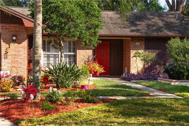 2685 Camille Drive, Palm Harbor, FL 34684 (MLS #U8030722) :: Homepride Realty Services