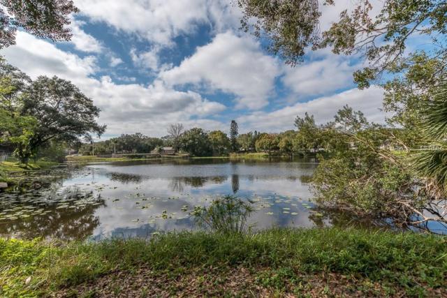 3778 Lake Shore Drive, Palm Harbor, FL 34684 (MLS #U8030738) :: Jeff Borham & Associates at Keller Williams Realty