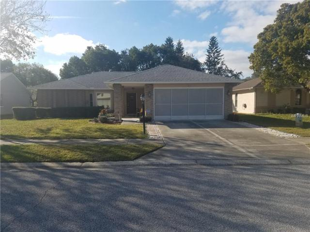 4713 Bellemede Boulevard, New Port Richey, FL 34655 (MLS #U8030793) :: Jeff Borham & Associates at Keller Williams Realty