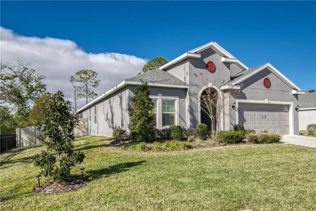 3211 Mela Court, Holiday, FL 34691 (MLS #U8030794) :: Jeff Borham & Associates at Keller Williams Realty