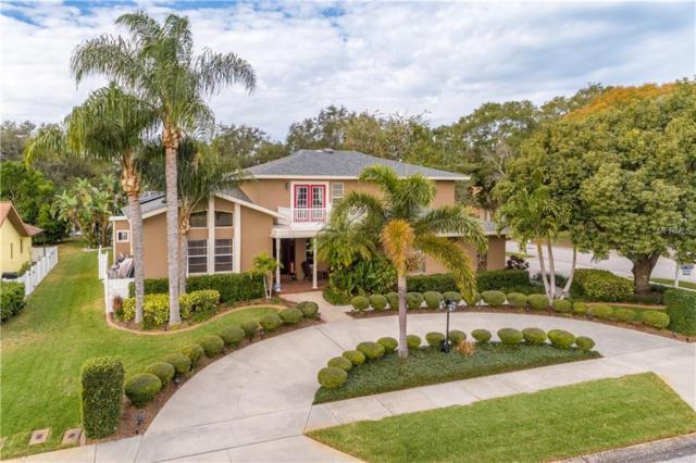 2360 Hidden Lake Drive, Palm Harbor, FL 34683 (MLS #U8030881) :: Delgado Home Team at Keller Williams