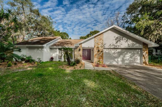 62 Bay Woods Drive, Safety Harbor, FL 34695 (MLS #U8030952) :: Paolini Properties Group