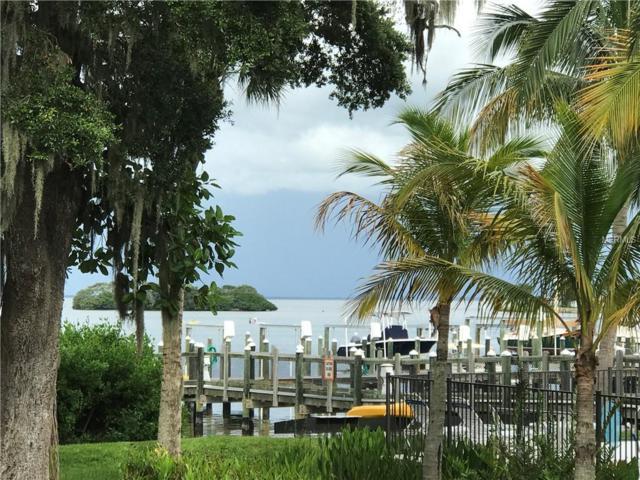 144 Banyan Bay Drive, St Petersburg, FL 33705 (MLS #U8030965) :: Burwell Real Estate