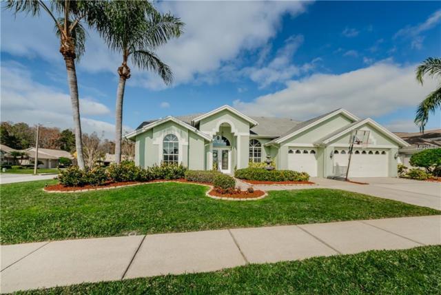 1211 Hoversham Drive, New Port Richey, FL 34655 (MLS #U8031046) :: Griffin Group