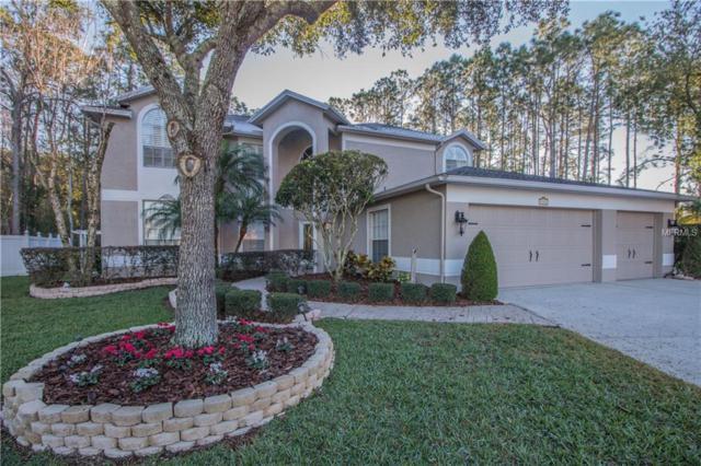 4153 Rotherham Court, Palm Harbor, FL 34685 (MLS #U8031056) :: Jeff Borham & Associates at Keller Williams Realty