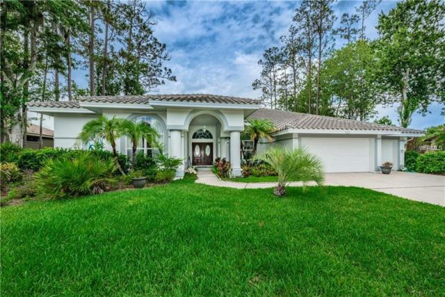 5036 Kilkenney Court, Oldsmar, FL 34677 (MLS #U8031074) :: Paolini Properties Group